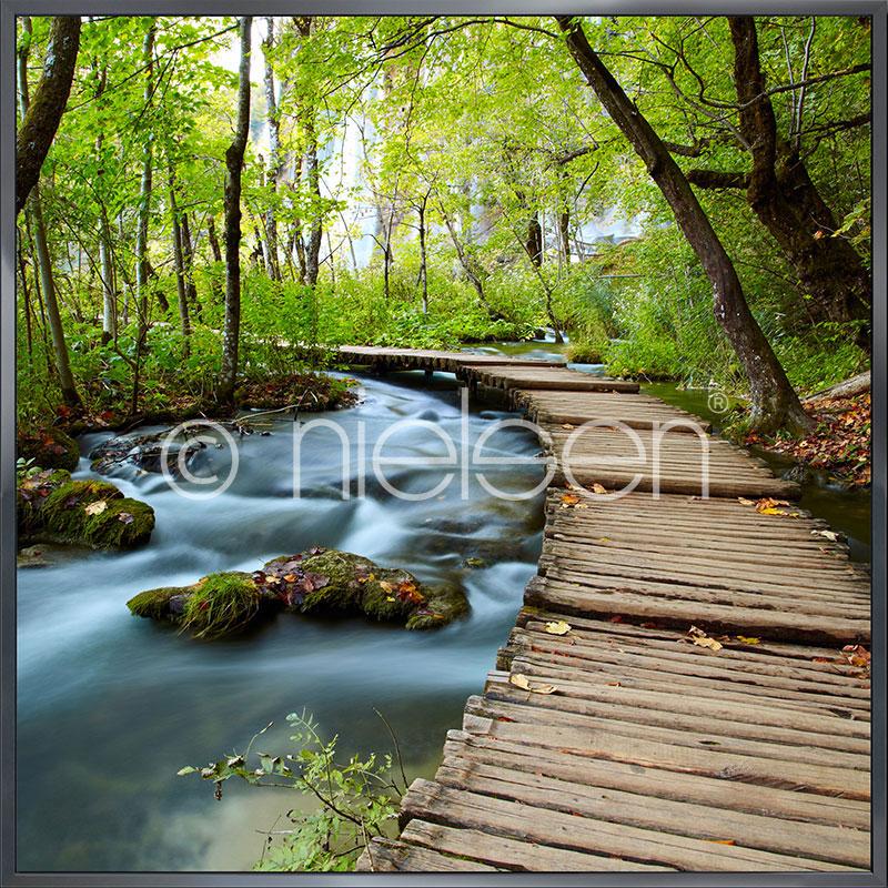 """Indrammet billede """"Footprint Forest"""" med aluramme Alpha"""
