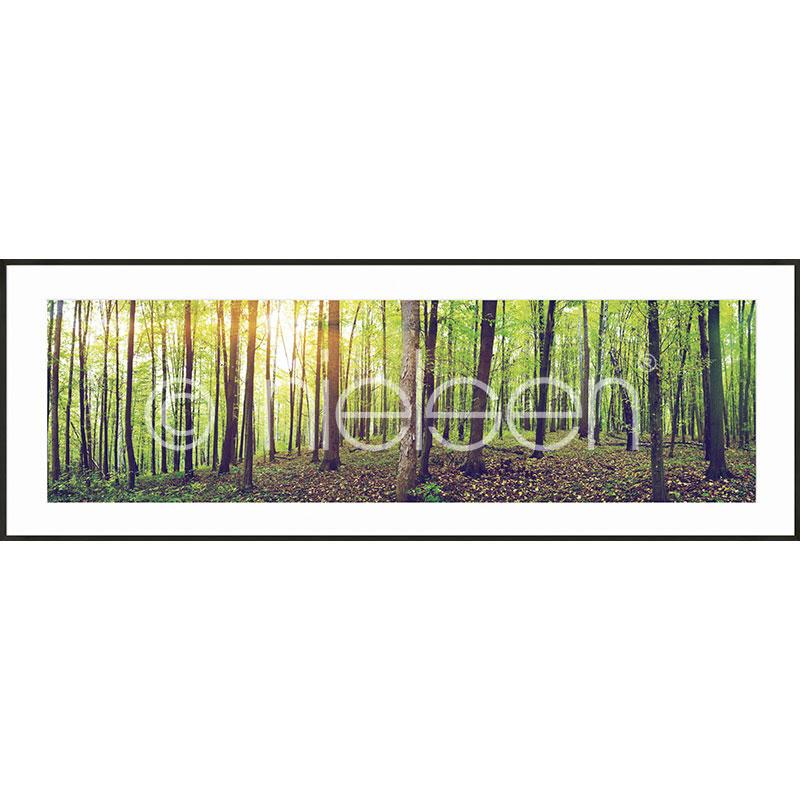"""Indrammet billede """"Forest"""" med aluramme C2"""